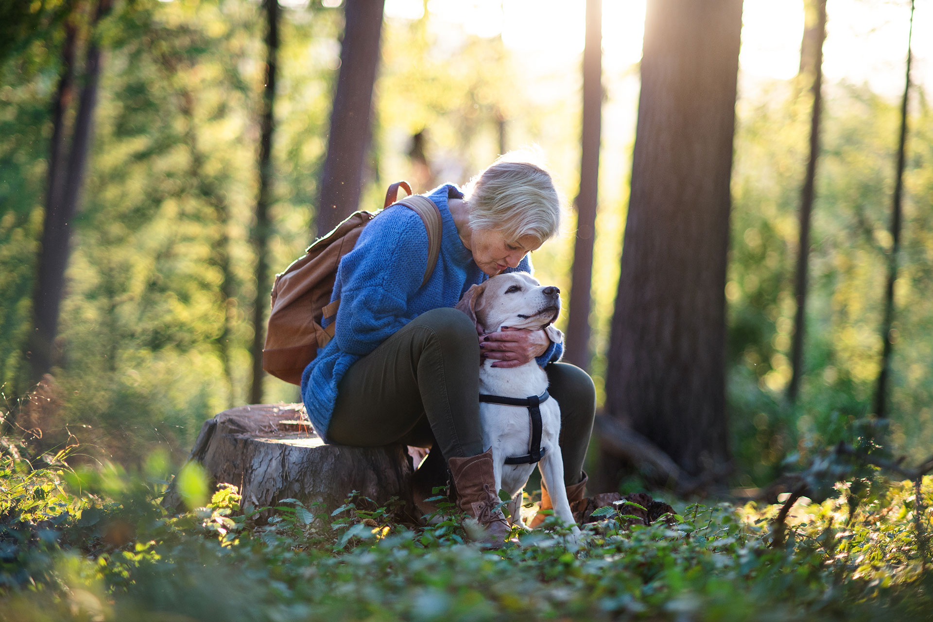A woman with short grey hair sits on a tree stump mid-hike and kisses her dog on the forehead.