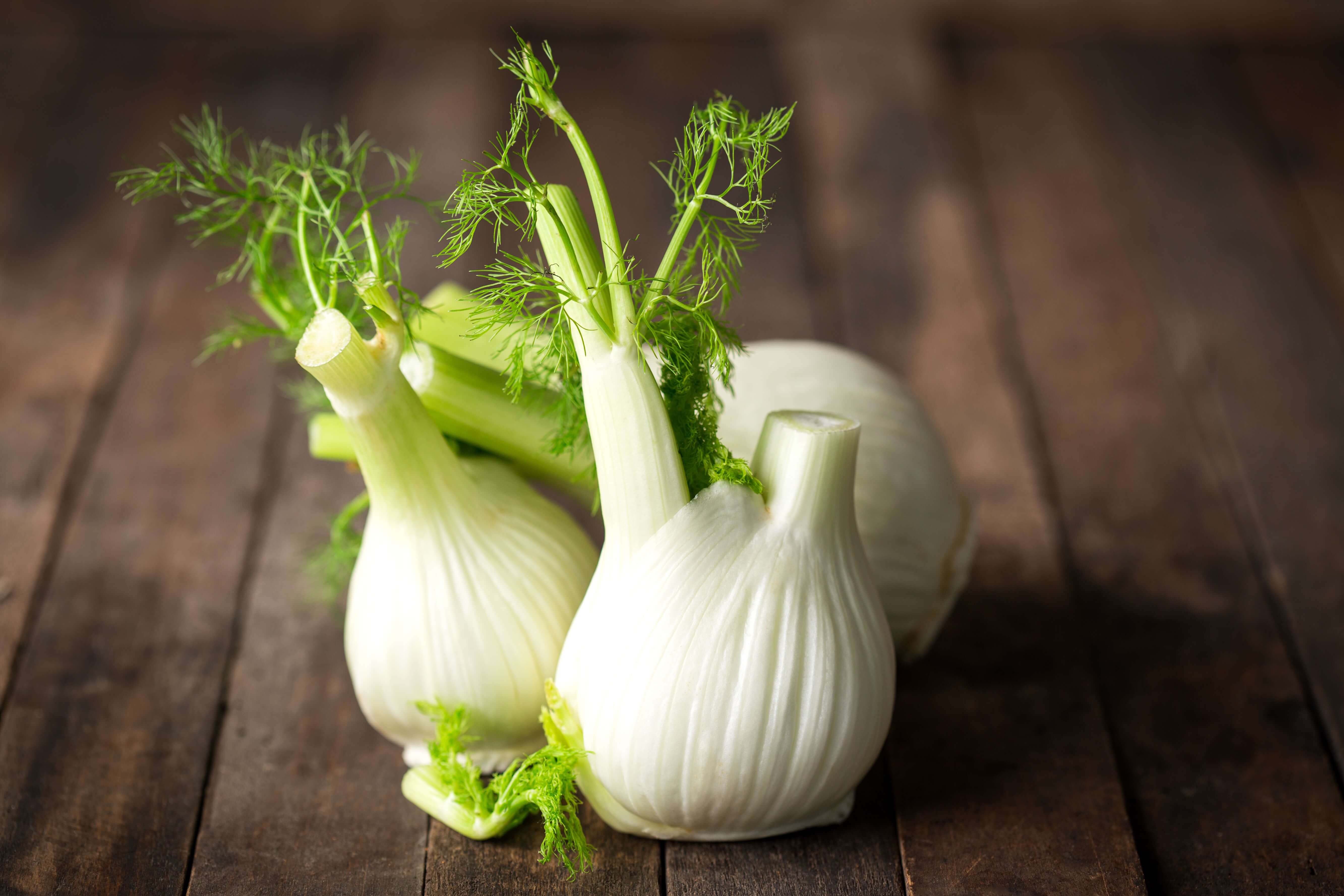 Veggie Of The Month Fennel