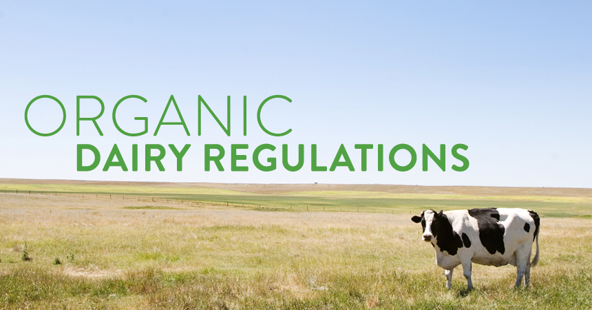 "Organic Dairy Regulations: What Makes a Cow ""Organic?"""